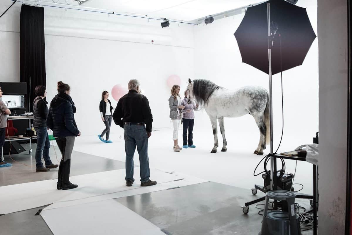 Fotoshooting mit Pferd in großer Hohlkehle